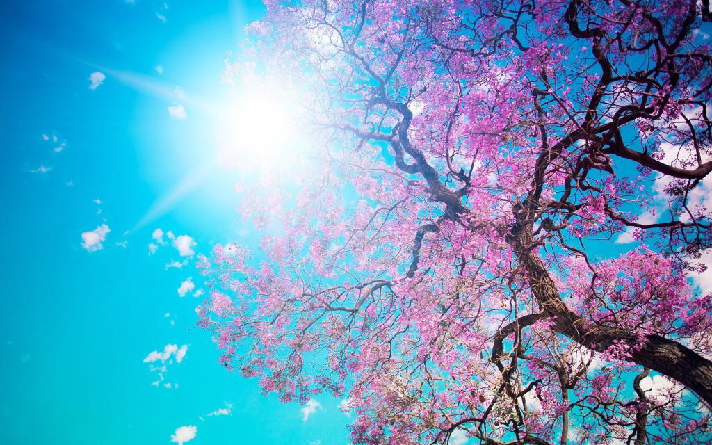 spring_time