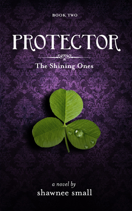 protector_kindle_fb