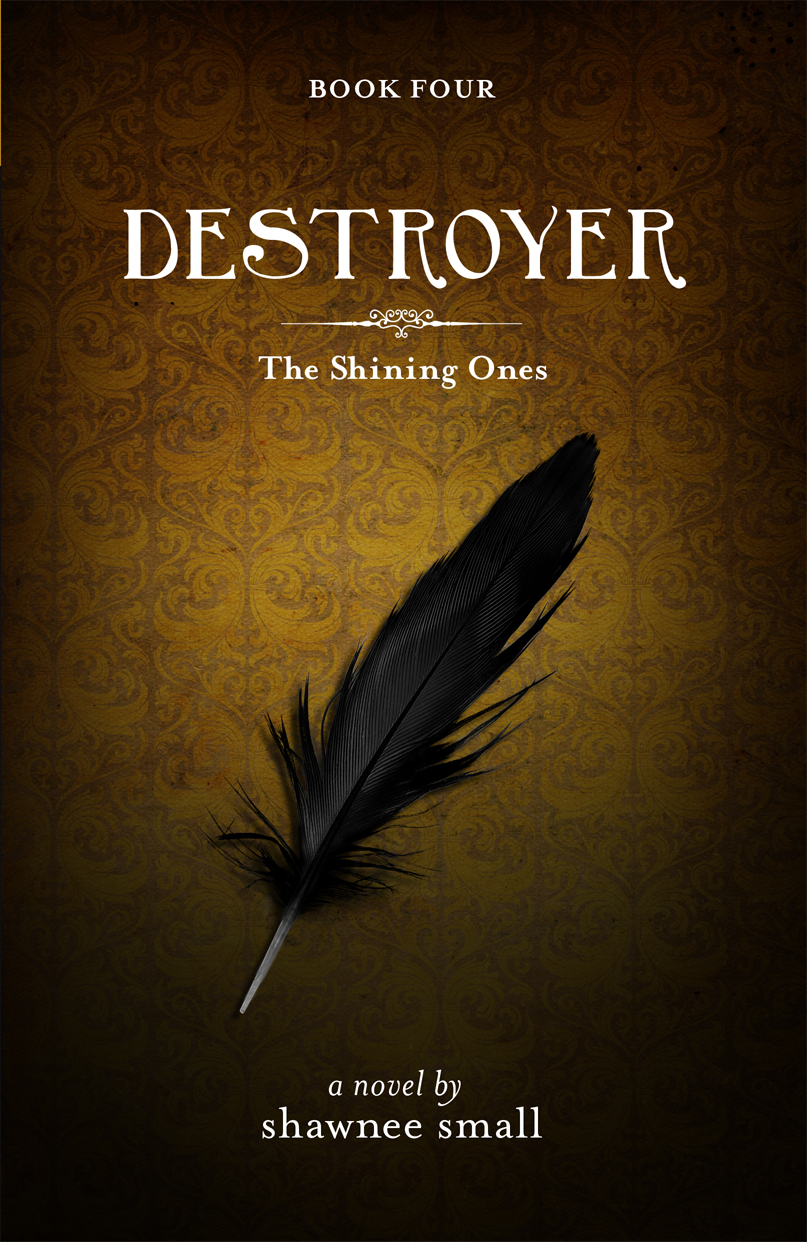 Destroyer Book Cover